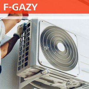 F-GAZY-02